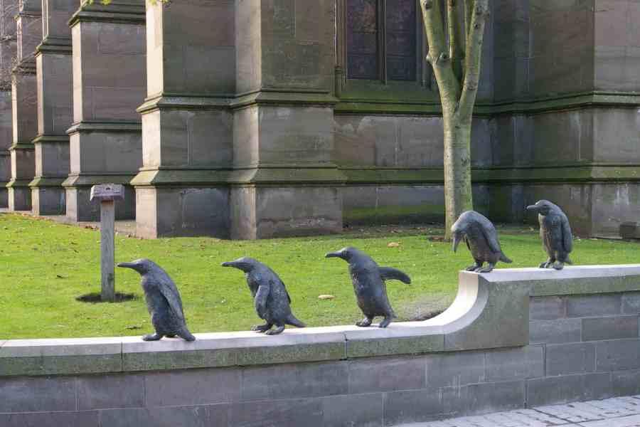 Angela Hunter penguins