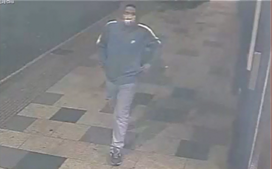 Clapham Junction sexual assault suspect