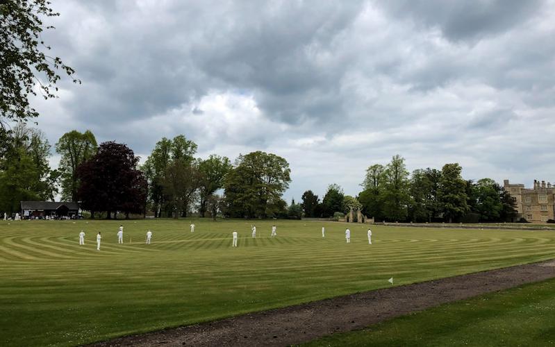 A cricket scene