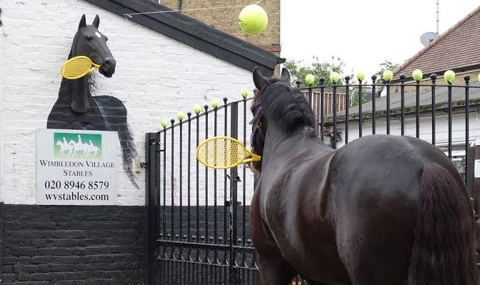 horse-tennis