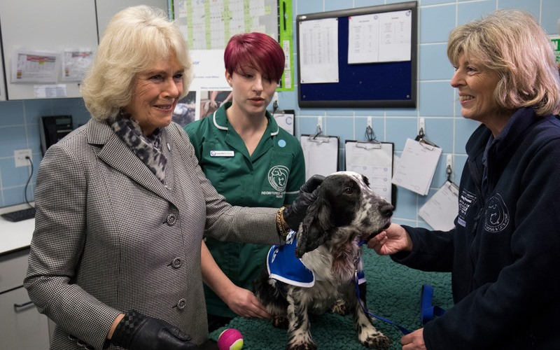 The Duchess of Cornwall at Battersea Dogs and Cats Home