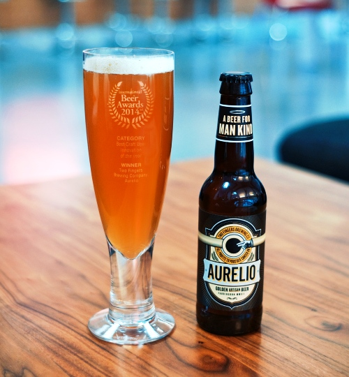 Two Fingers Brewing Co. - Aurelio Beer