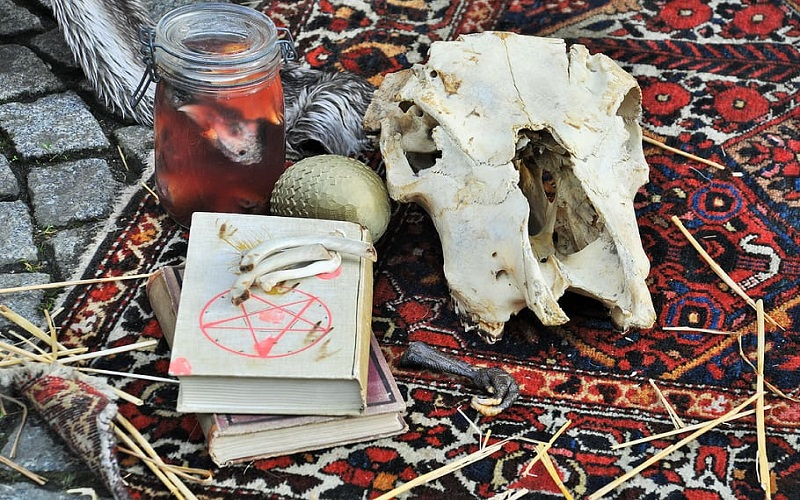 Animal skull, spell books and other occult items