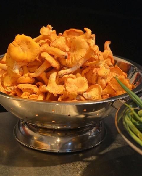 mushrooms pasta making class