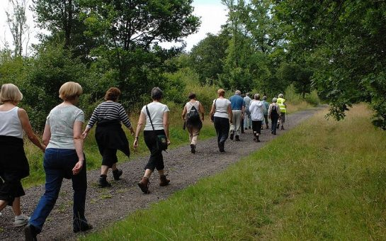 A group of people walking in a wooded area