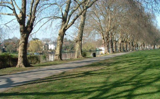 Canbury Gardens
