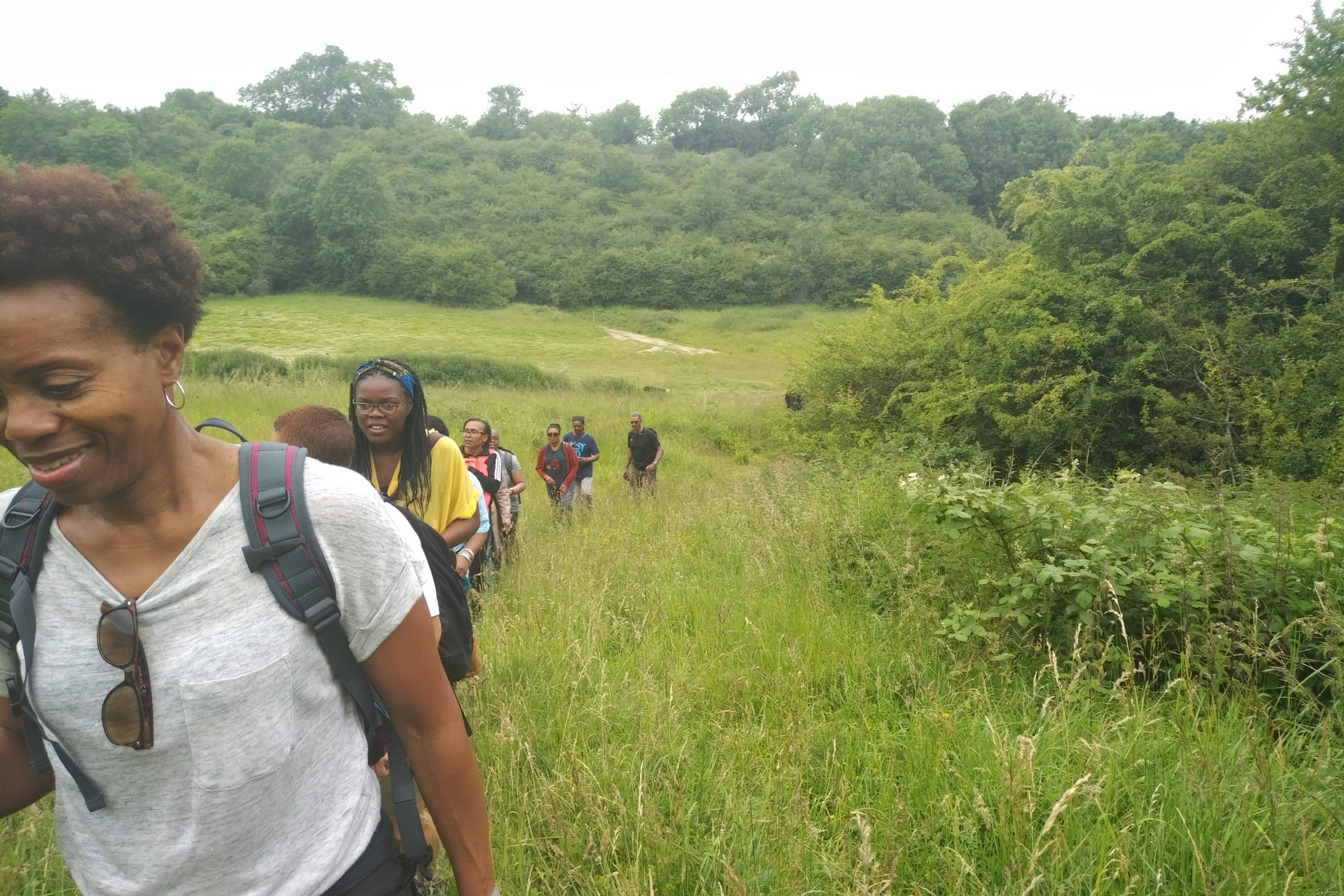 A line of people hiking through long grass surrounded by bushes.