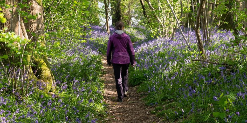 Liz Wakelin in a purple coat walking through a path of bluebells