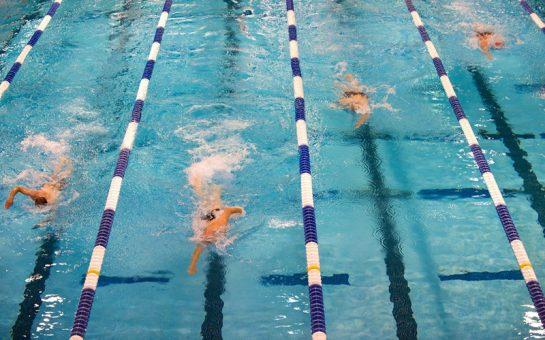 People swimming in pool lanes