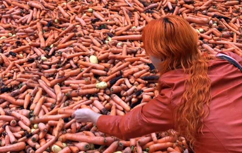 Woman looking at tonnes of carrots.