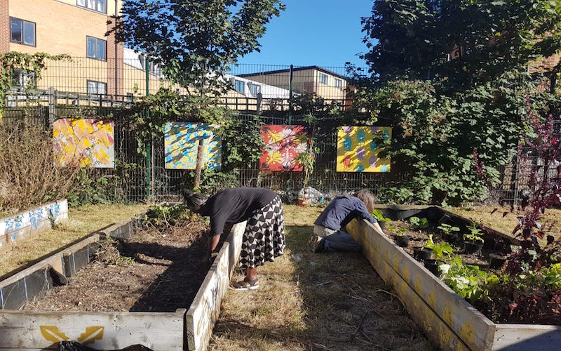 Volunteers grow food produce in spaces that would be neglected