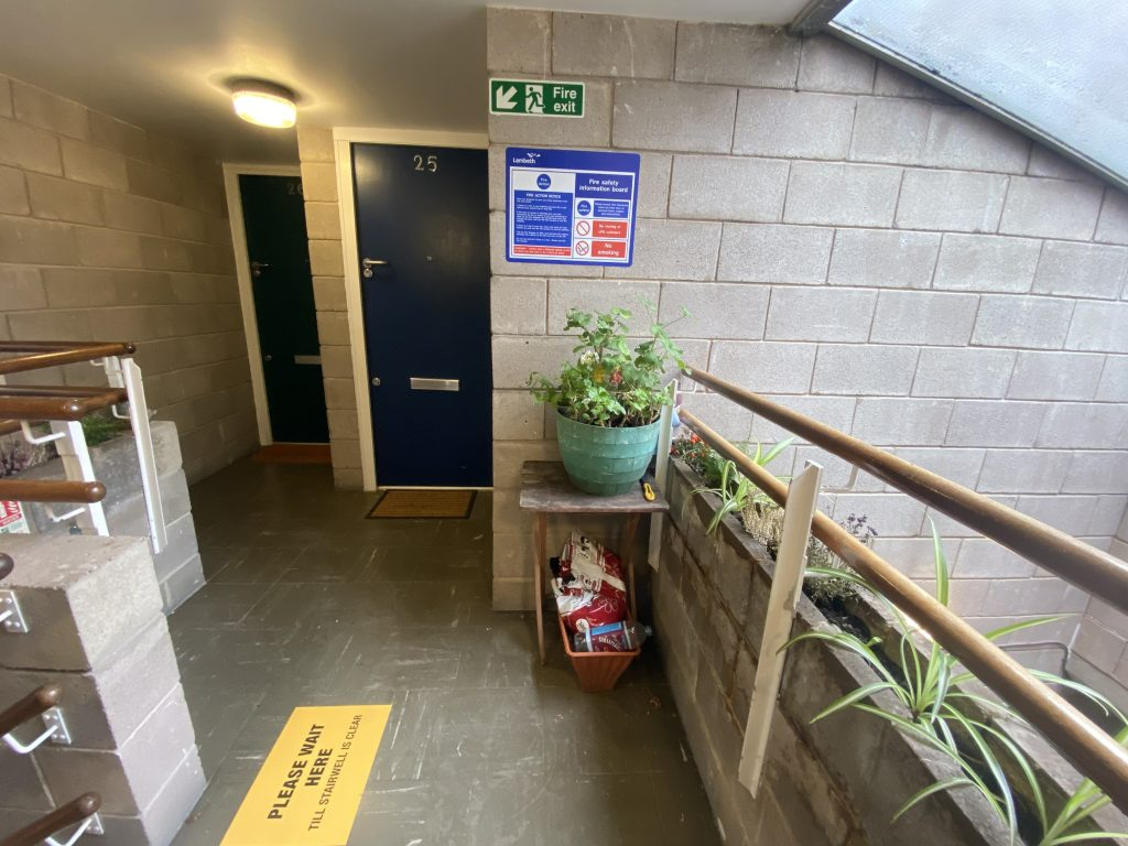 A plant pot sits in front of where a fire extinguisher should be