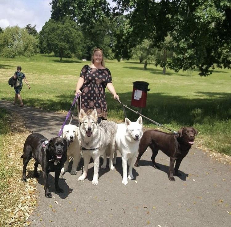 Go Walkies Owner Laura Ochoa walking dogs in the park