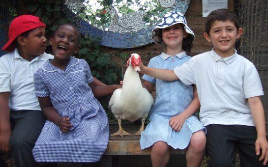 School children and farm duck