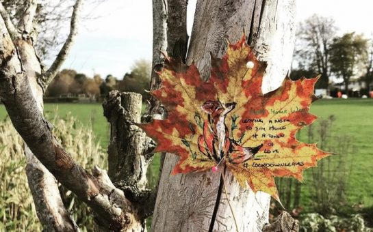 A leaf pinned to a tree trunk with a brightly coloured fox drawn on it