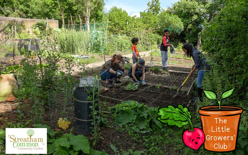 Little Growers Club gardening on vegetable patch