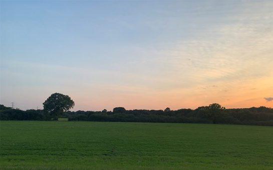 tolworth court farm fields