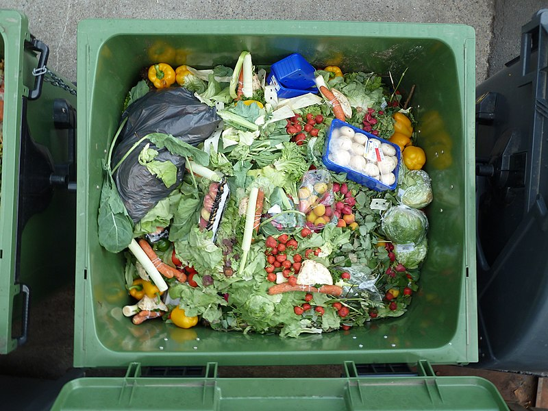 Top down picture of a green bin filled with various food items including lettuce, eggs, mushrooms and other non identifiable items. The bin is nearly filled to the top indicating a large amount of food waste.