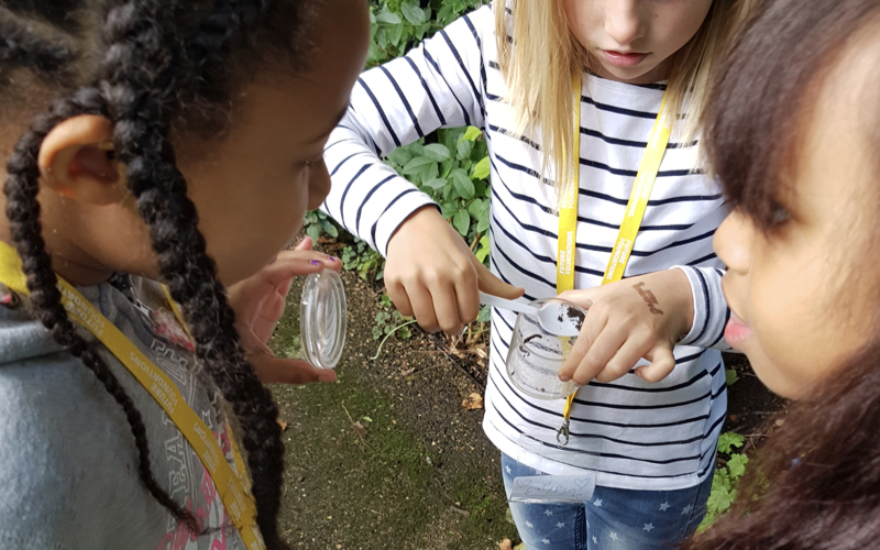 A group of three primary school children collect outdoor samples as part of a learning workshop at Leighton House