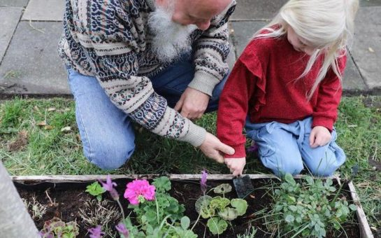 citizens of merton planting in the borough