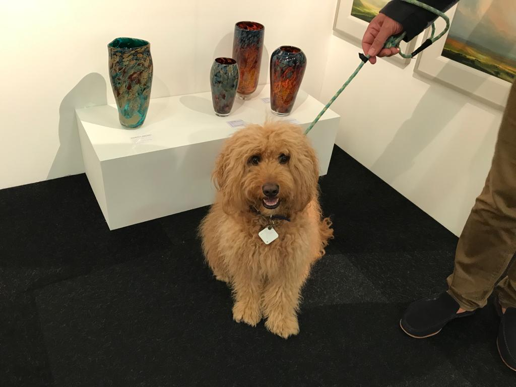 Hamish the dog going around the Affordable Art Fair Battersea.