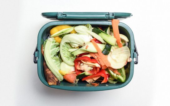 Food waste collection bin